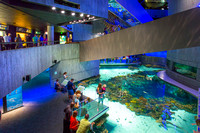 Baltimore Aquarium_6761