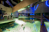 Baltimore Aquarium_6737